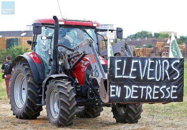 Crise agricole : tribune des évêques de la province de Rennes