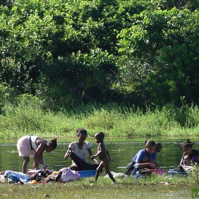Les lavandières de Madagascar.