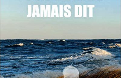 *TU NE M'AVAIS JAMAIS DIT* Justine Duval* Éditions Librinova* par Carole Emery*