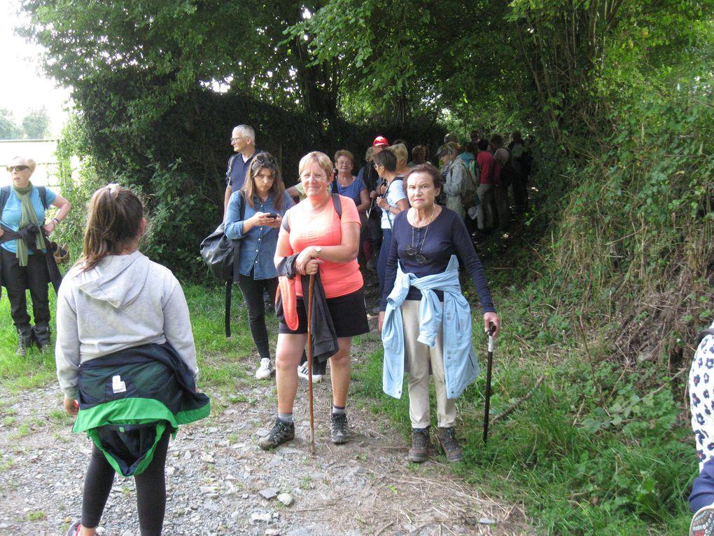 Dans les chemins de La Luzerne... derrière Lucienne !