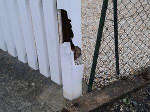 Le poteau pvc cassé par une voiture, chose qui arrive hélas, donc démontage du poteau cassé et burinage au pied ...