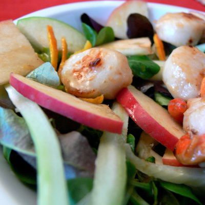 Comment  trouver le régime alimentaire qui nous convient le mieux ?