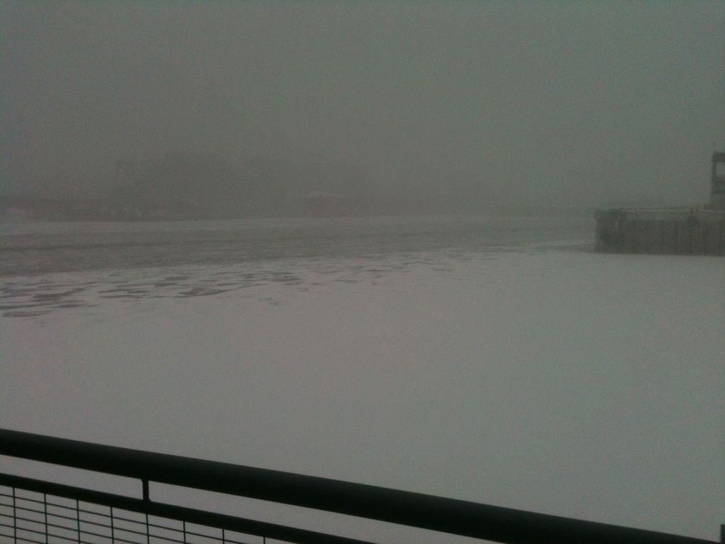 Montréal sous la neige, Janvier 2012