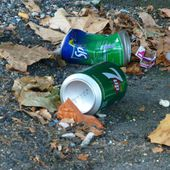 Gros dégueulasses (4) : le pigeon mort n'y est plus mais les déchets oui ! - Vierzonitude