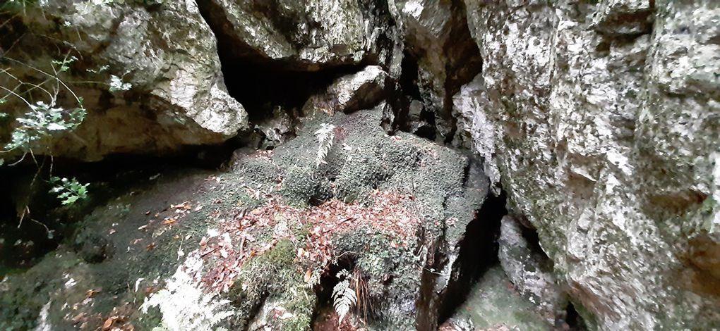 Patrimoine naturel à la Roche