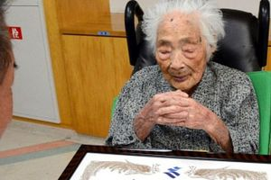World's Oldest Person, Nabi Tajima, 117, Says She Owes It All To Standing Desk At Work