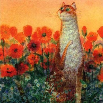 Magnifique dessins de chats....