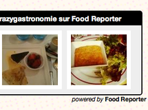 Lancement officiel du nouveau Widget Food Reporter !