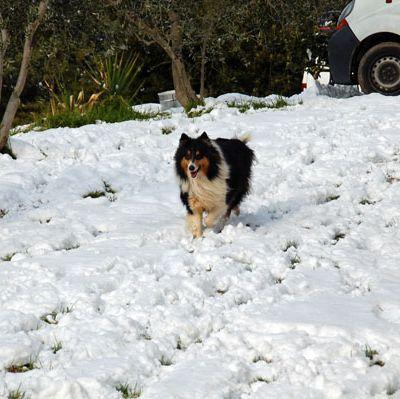 Les joies de la neige lol