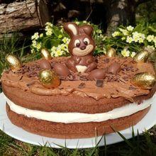 Gâteau de Pâques (mon robot et moi)