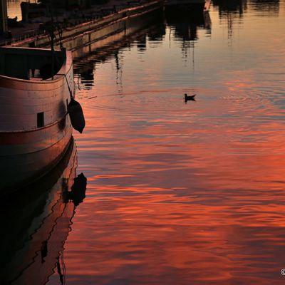 Un port un soir