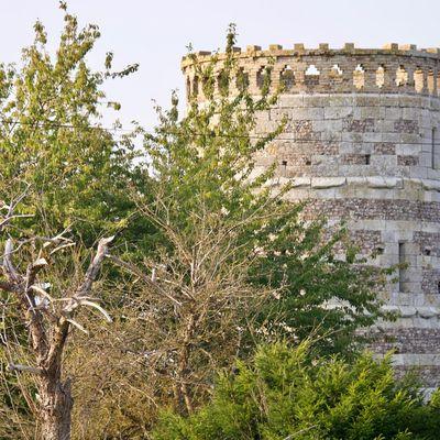 Le moulin de La Haye-Malherbe, dit moulin de Beauregard