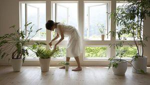 Maneras de mantener el aire limpio en casa