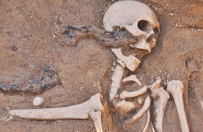 Skelettfunde beim Ausbau der Kirchstraße in Veitshöchheim sorgen für Aufsehen