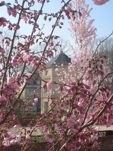 """Concours """"Un printemps à Fontenay"""", vous avez choisi..."""