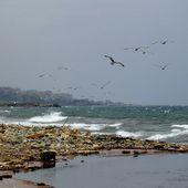 Mer Méditerranée : Mare... nostrum ? (3/4) : Tourisme, surpêche, pollution : un écosystème en péril