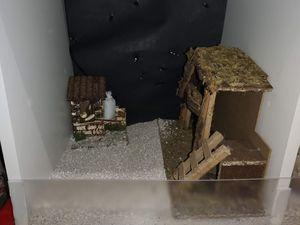 El Belén (pesebre) en dioramas