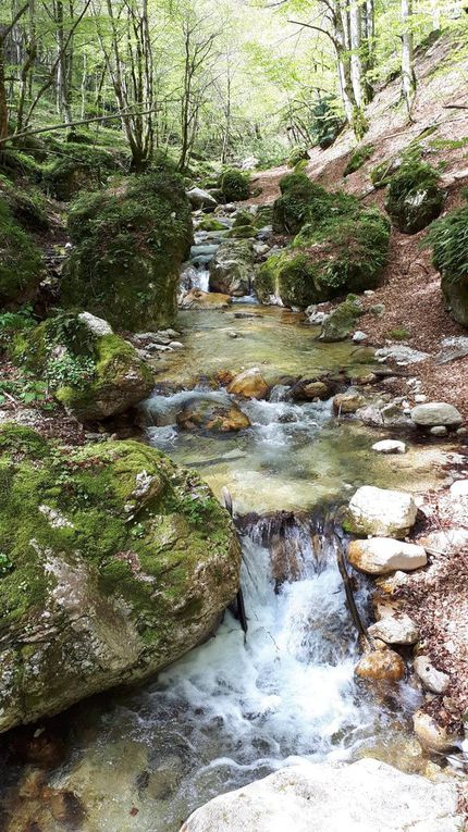 Gole dell'Infernaccio - Montefortino (AP)