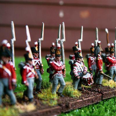 2nd Battalion / 30th (Cambridgeshire) Regiment