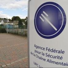C'est un mauvais jour, si votre bureau est perquisitionné : une édition chez l'Agence Fédérale (belge) pour la Sécurité de la Chaîne Alimentaire à propos de la présence de fipronil dans des œufs