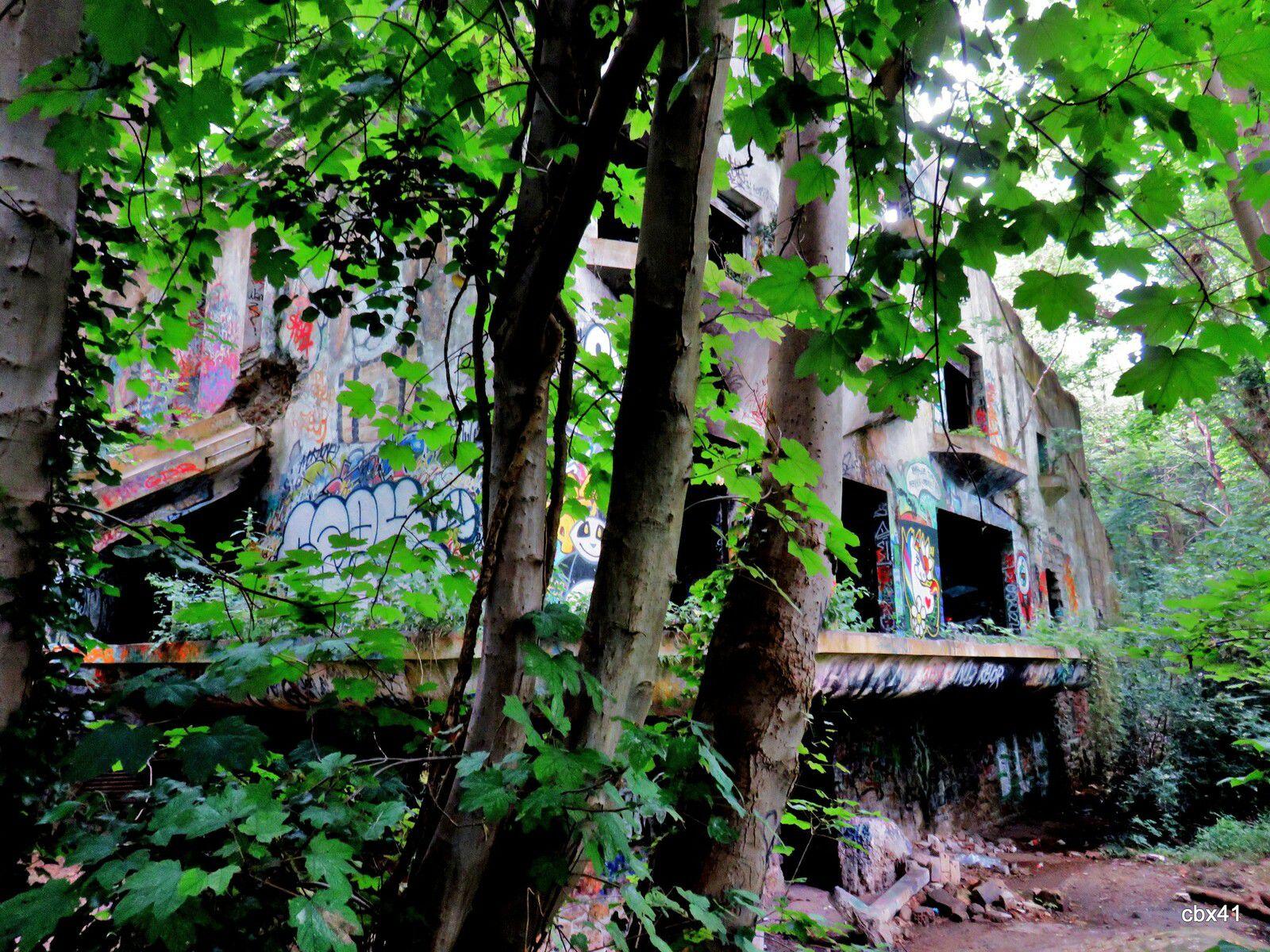 Villa Sapène, Intérieurs (Forêt du Mesnil-le-Roi)