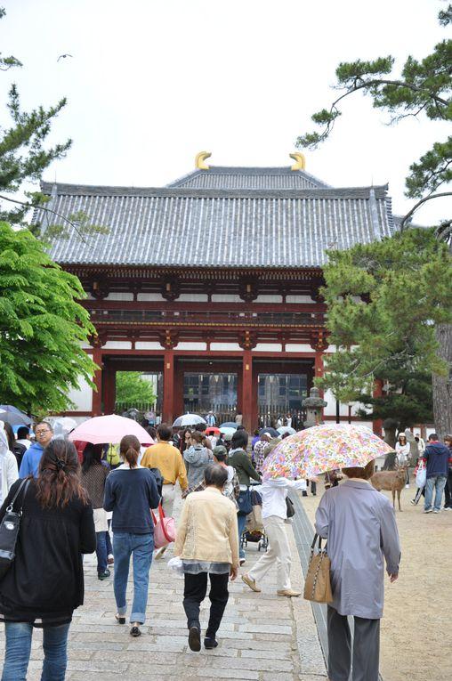 Album - 11 - Nara