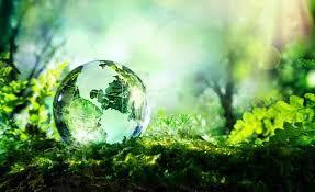 L'écologie à l'esbroufe