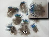 En ce moment, je recherche ce type de plumes.
