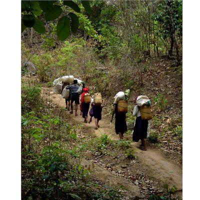 Exploitation illégale des ressources naturelles = Réduction de la pauvreté dans les PVD (pays en Voie de développement) : une équation injuste