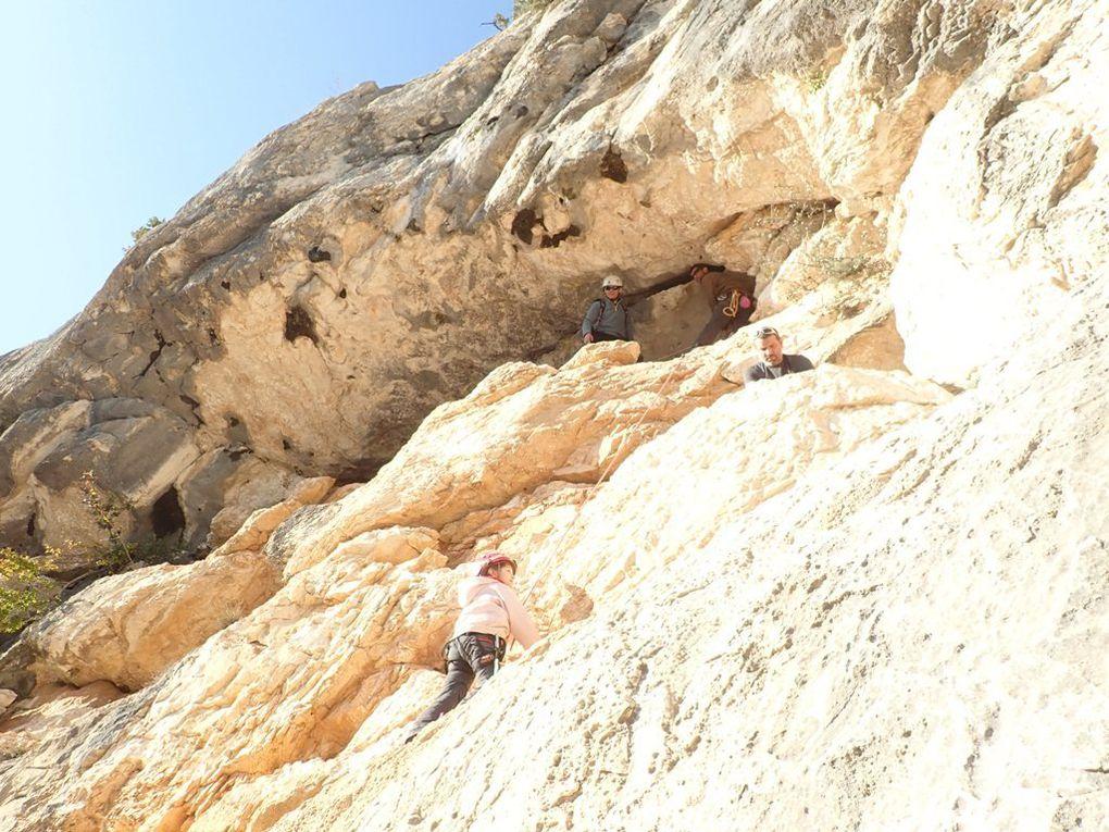 la grotte aux champignons bis
