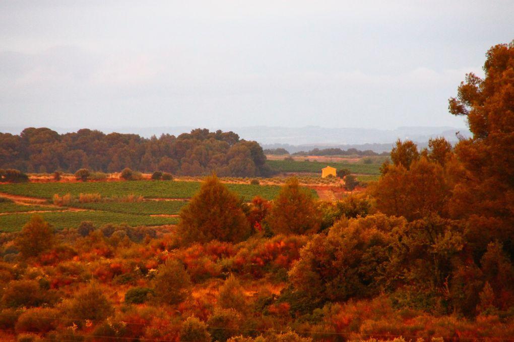 Journées portes ouvertes d'automne à Cadablès : juste !