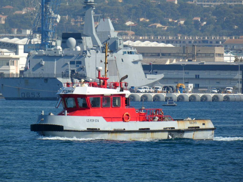 SULTAN , remorqueur en petite rade de Toulon le 01 juillet 2019