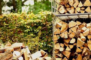 Vite, du bois pour l'hiver ?