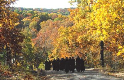 Automne benedictine monks osb+