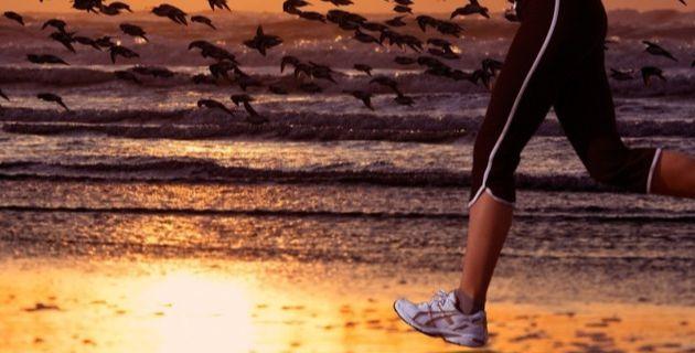 L'Entraînement-Course à pied