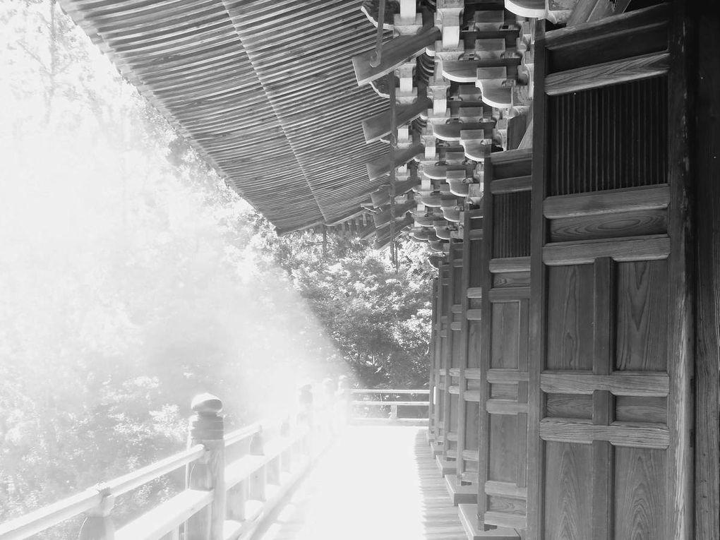 Himeji Mount Shosha Shrine, Japan