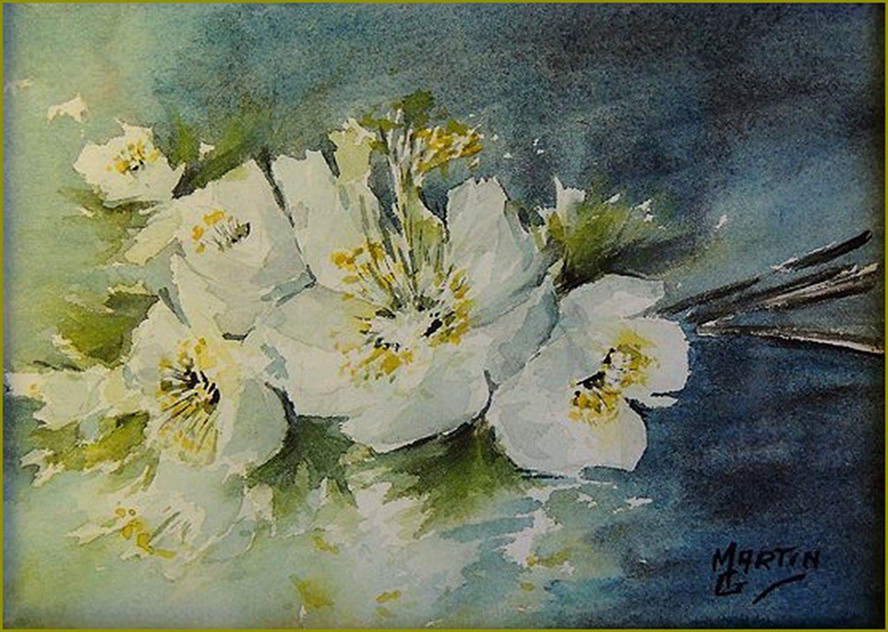 Les fleurs par les grands peintres -  Gérard Martin - Hellebore - roses de Noël