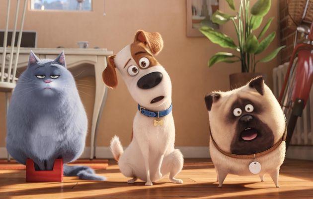 Le film d'animation « Comme des bêtes » le vendredi 14 Juillet sur Canal+