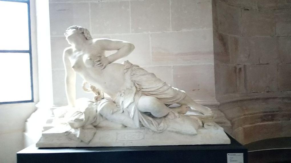 Creation Palais des beaux arts