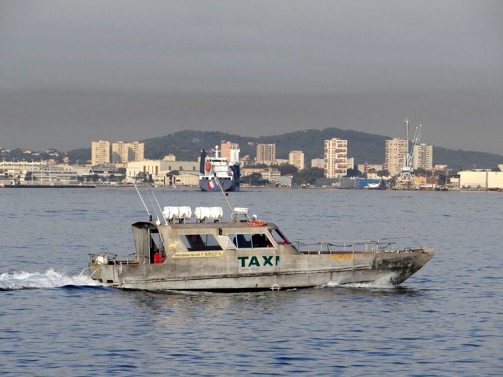 PELICAN  , navette taxi au départ du port de la tour fondue sur la presqu'ile de Giens, vers les iles d'Hyères  ou les ports du litoral  , arrivant au port de Toulon le 03 septembre 2017