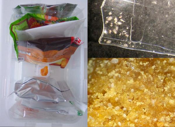 Aliments et acariens de stockage