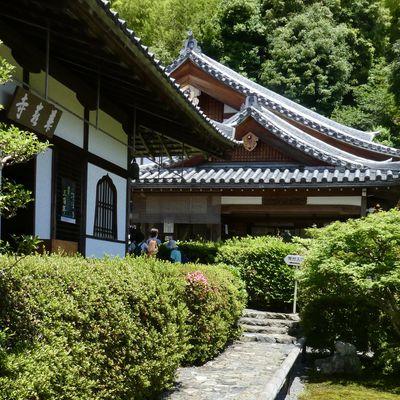 Kyôto : Suzumushidera 鈴虫寺, le temple aux grillons
