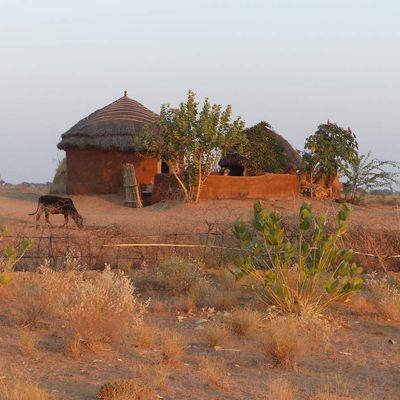 Véronique, expat et professionnelle du tourisme en Inde