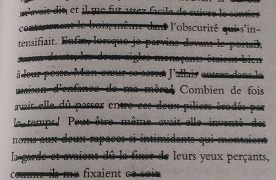 Imitation - Lucien Suel