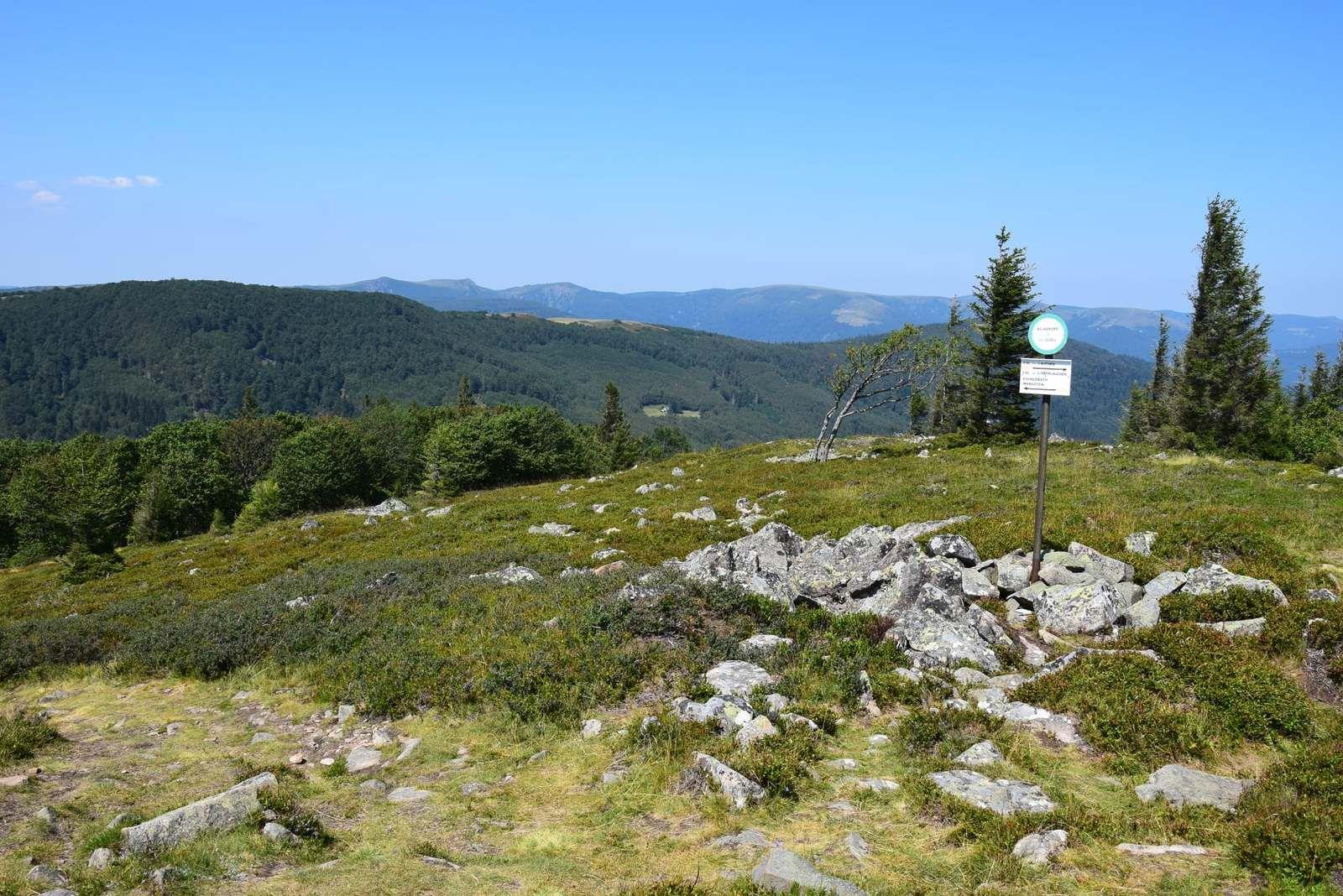 Le Klintzkopf est le 5ème sommet du massif vosgien avec ses 1329m. d'altitude