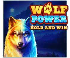 machine a sous Wolf Power logiciel Playson