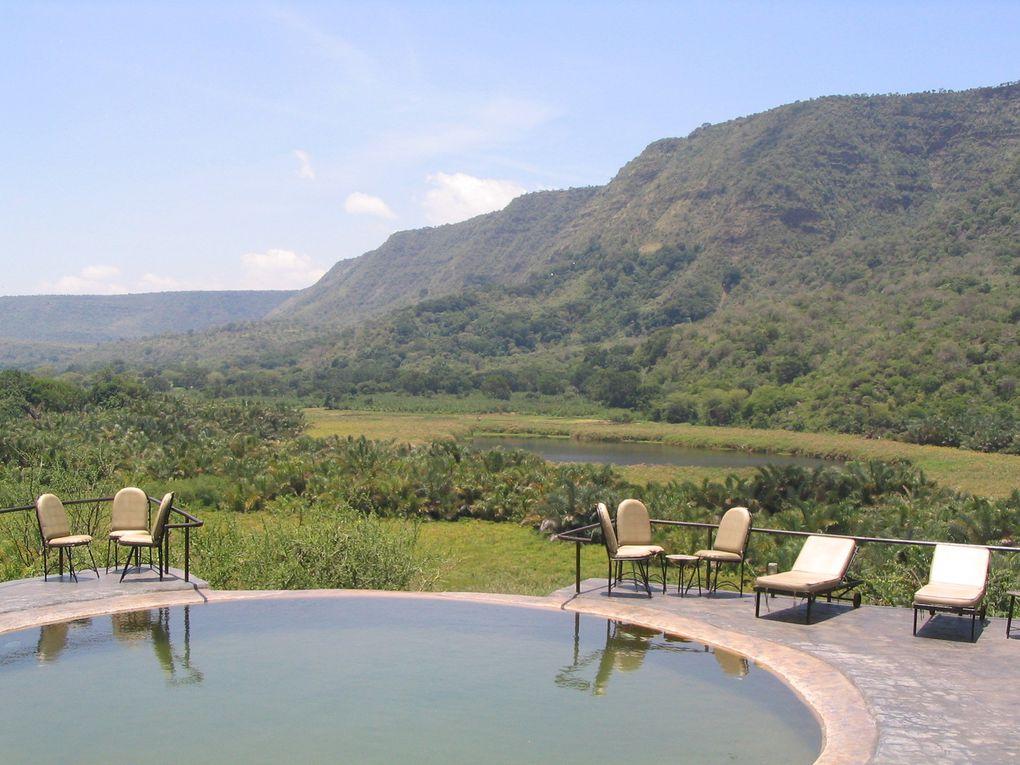 Safari Lac Manyara - Tanzanie