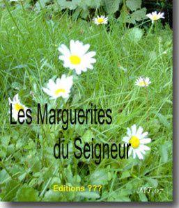 161 - Les Marguerites du Seigneur