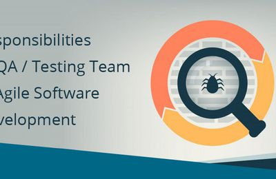 Roles Plays By Testing Team in Agile Software Development - Bugraptors