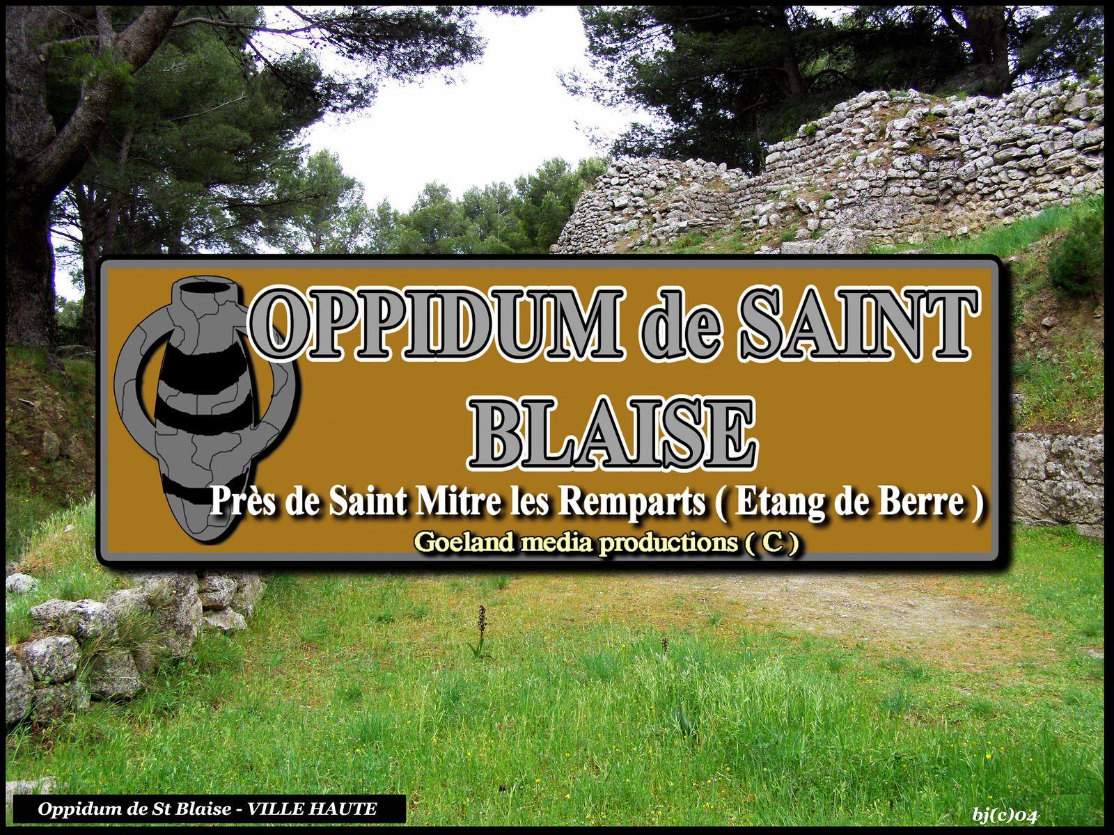 FLORE de St BLAISE - Les CISTES - près de St Mitre les REmparts - BERRE l'ETANG - goelandmedia.prod@gmail.com (c)